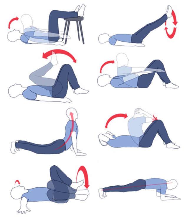 Избавиться от живота в домашних условиях упражнения 24